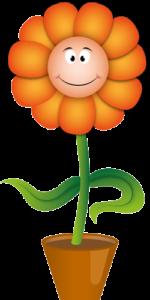Třída Oranžová kytička